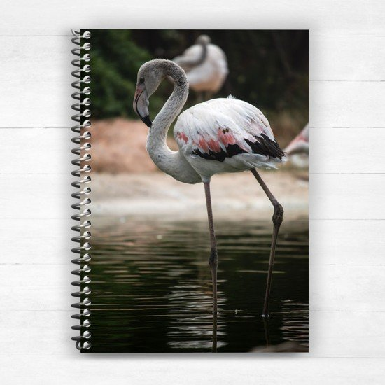 Flamingos - Spiral Notebook